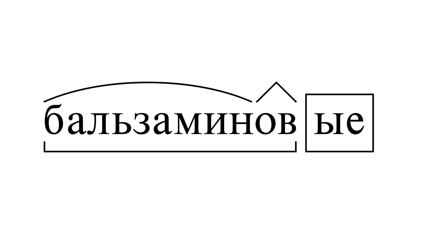 Разбор слова «бальзаминовые» по составу