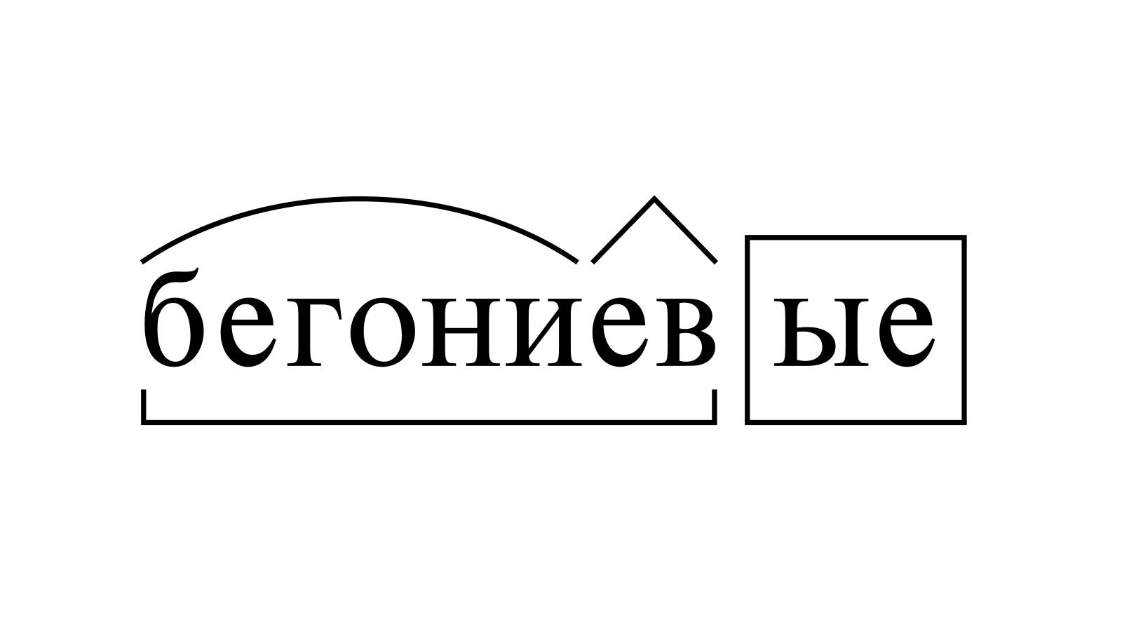 Разбор слова «бегониевые» по составу