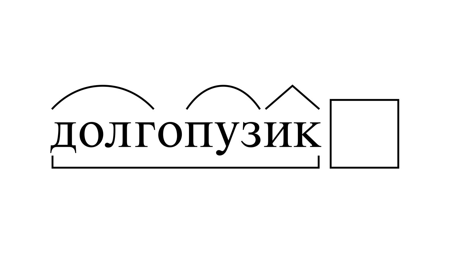 Разбор слова «долгопузик» по составу