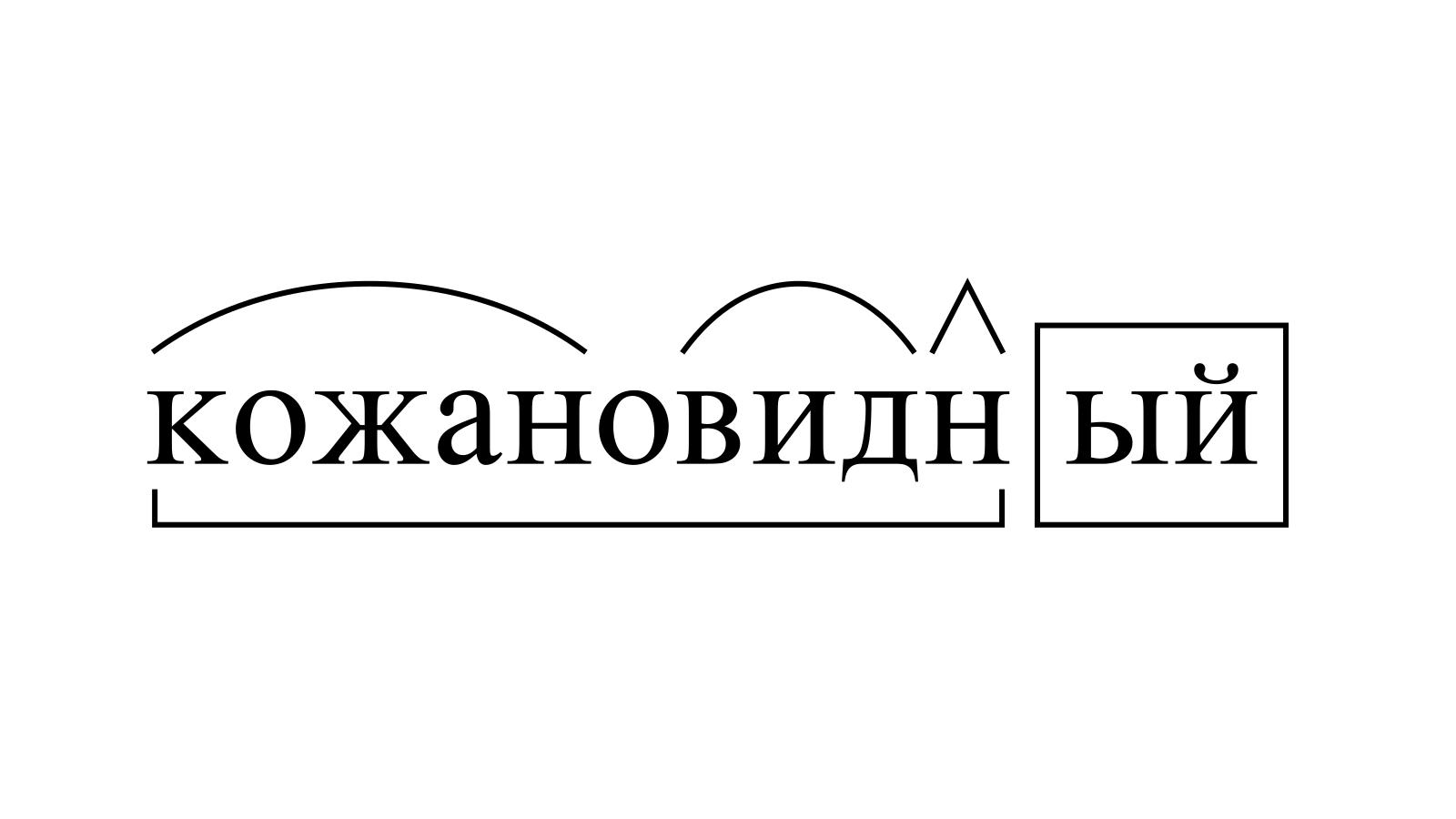 Разбор слова «кожановидный» по составу