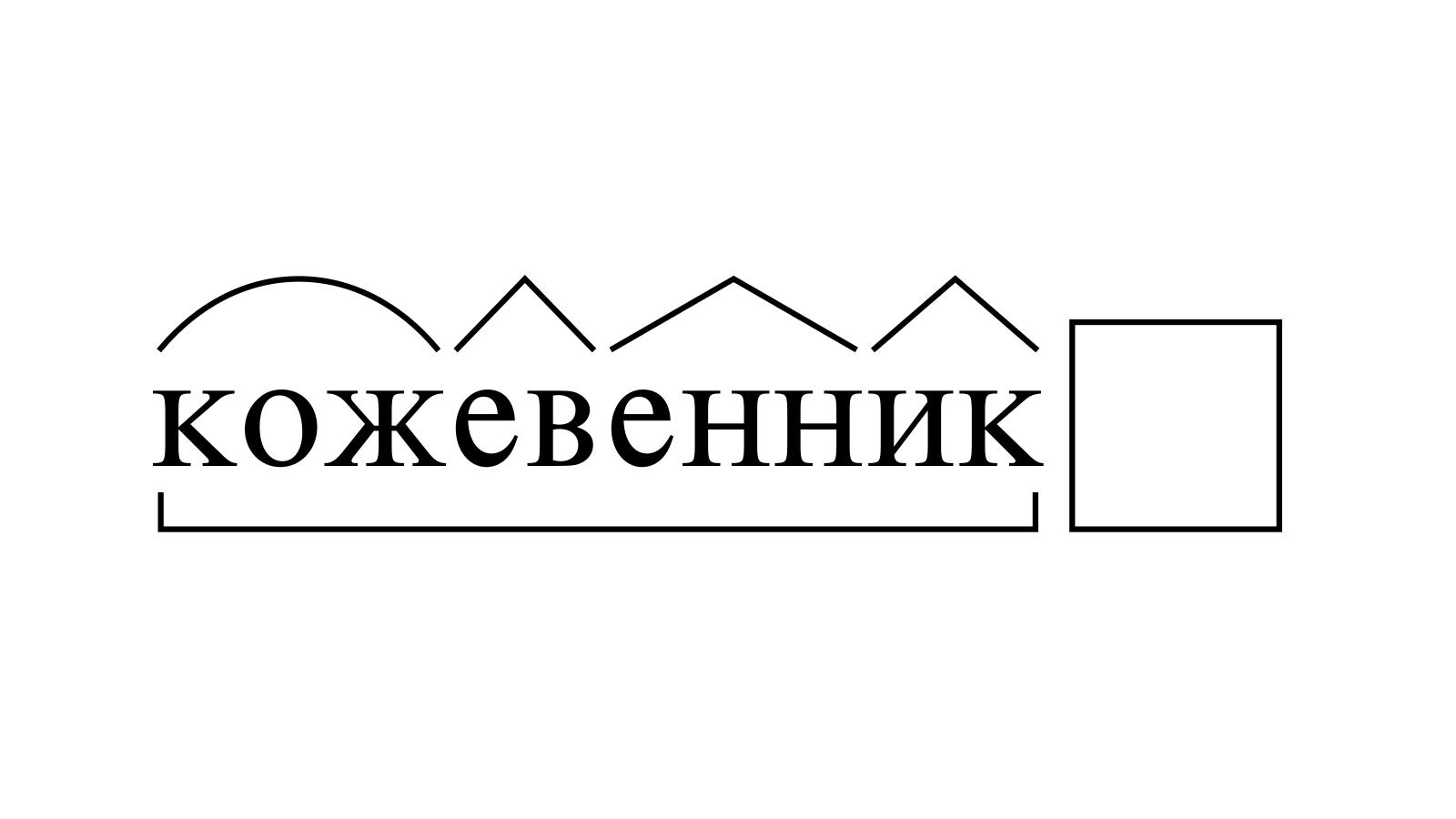 Разбор слова «кожевенник» по составу