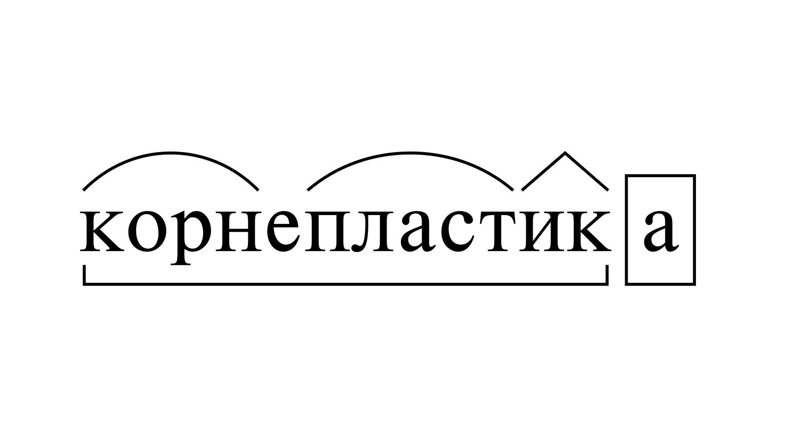 Разбор слова «корнепластика» по составу