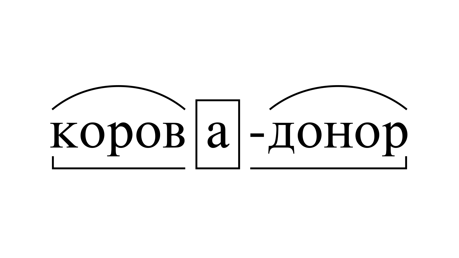 Разбор слова «корова-донор» по составу