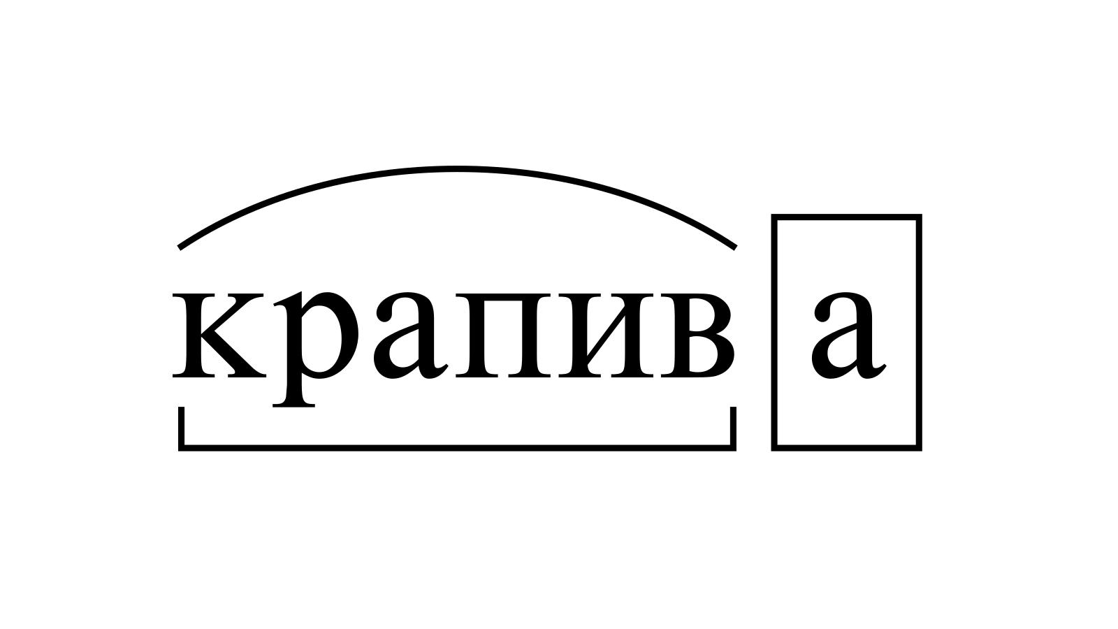 Разбор слова «крапива» по составу