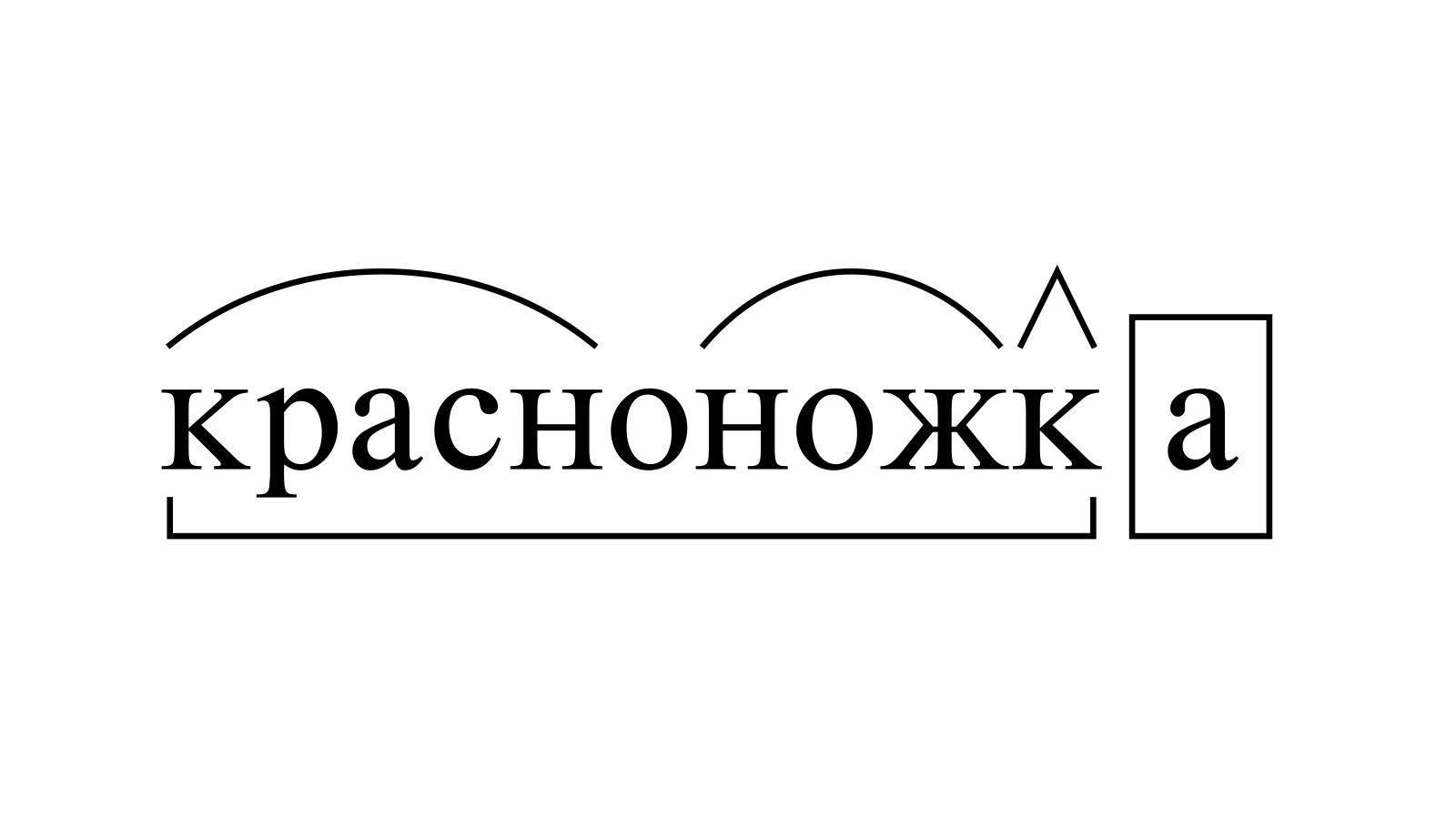 Разбор слова «красноножка» по составу