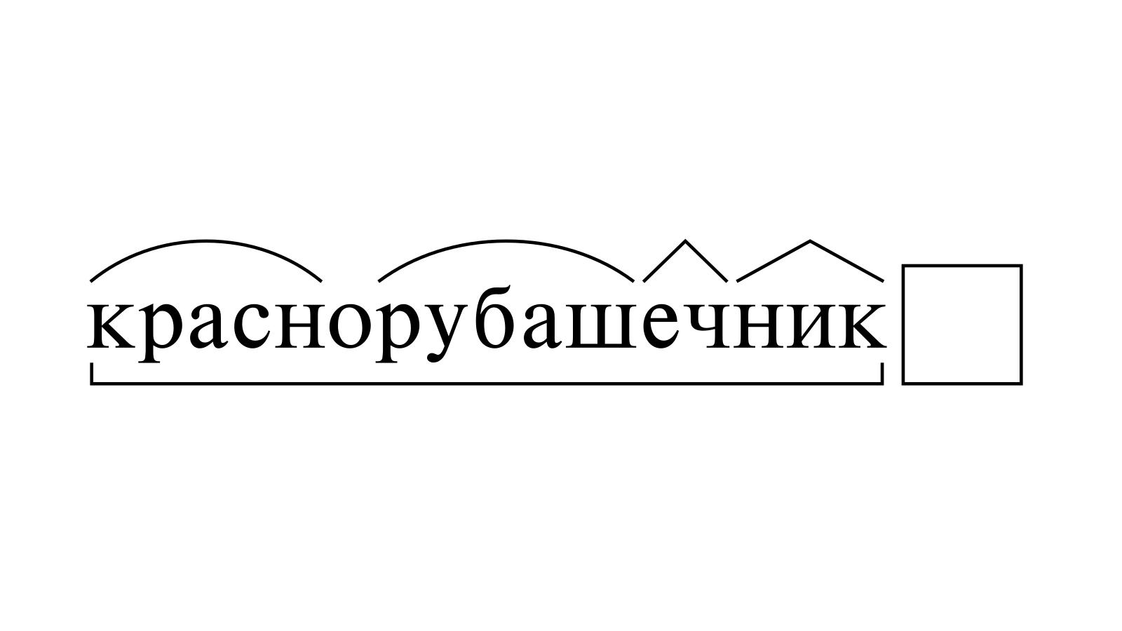 Разбор слова «краснорубашечник» по составу