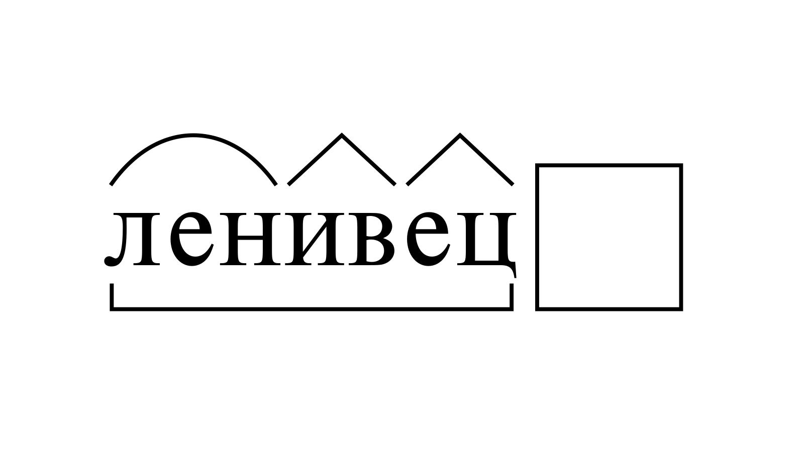 Разбор слова «ленивец» по составу