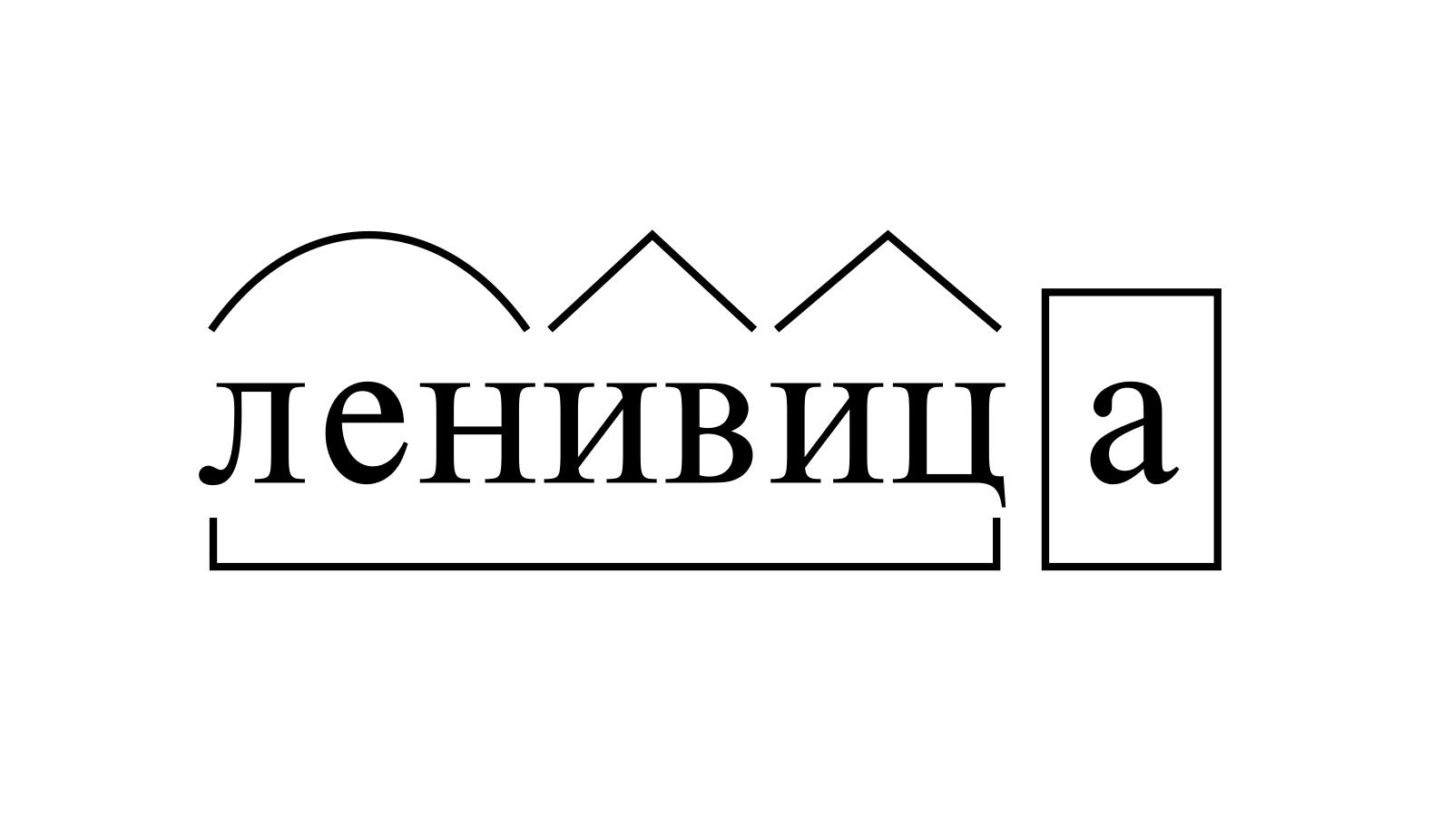 Разбор слова «ленивица» по составу