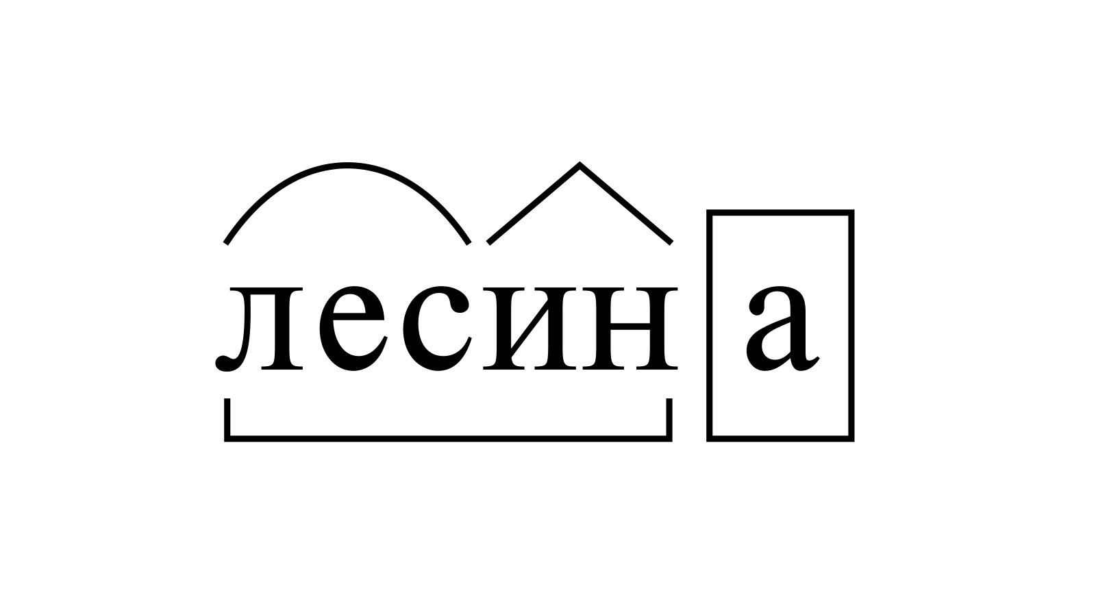 Разбор слова «лесина» по составу