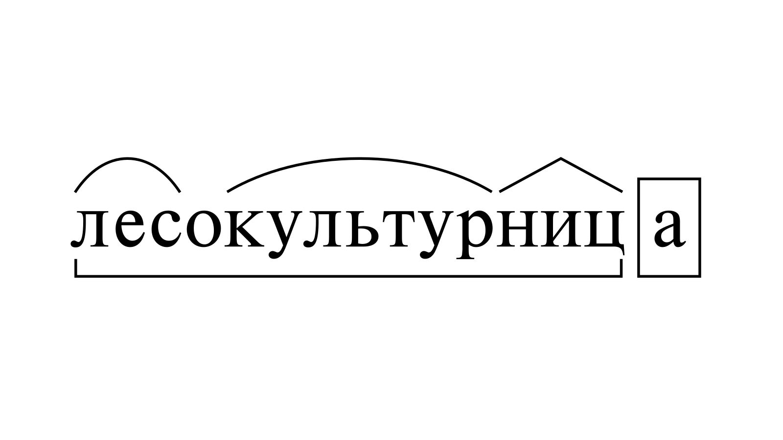 Разбор слова «лесокультурница» по составу