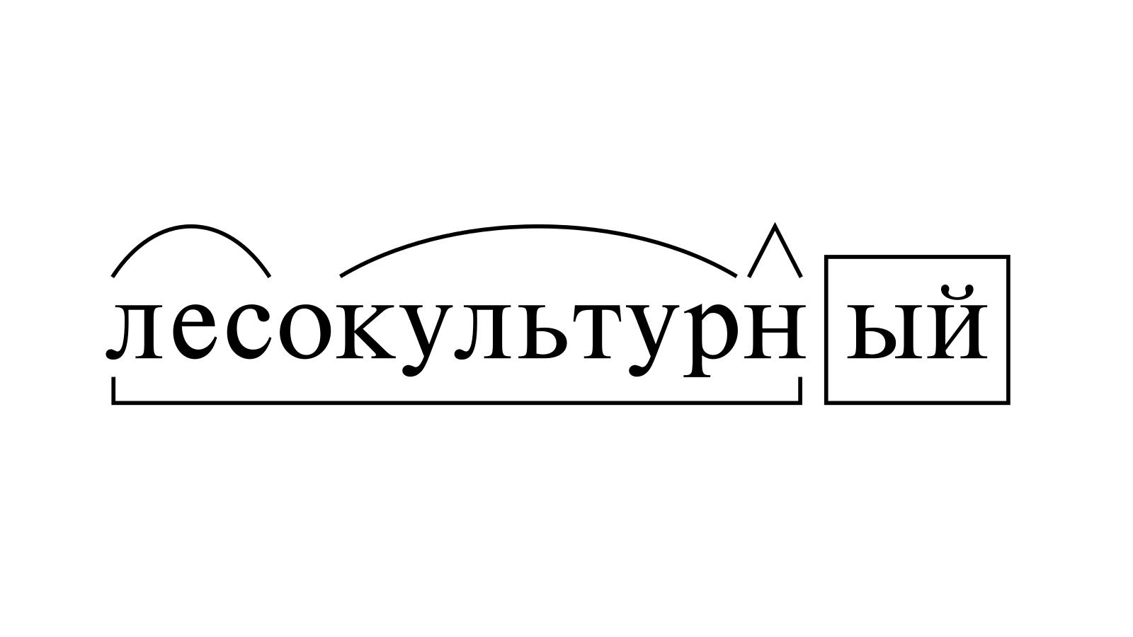 Разбор слова «лесокультурный» по составу