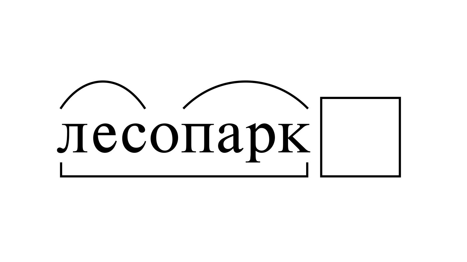 Разбор слова «лесопарк» по составу