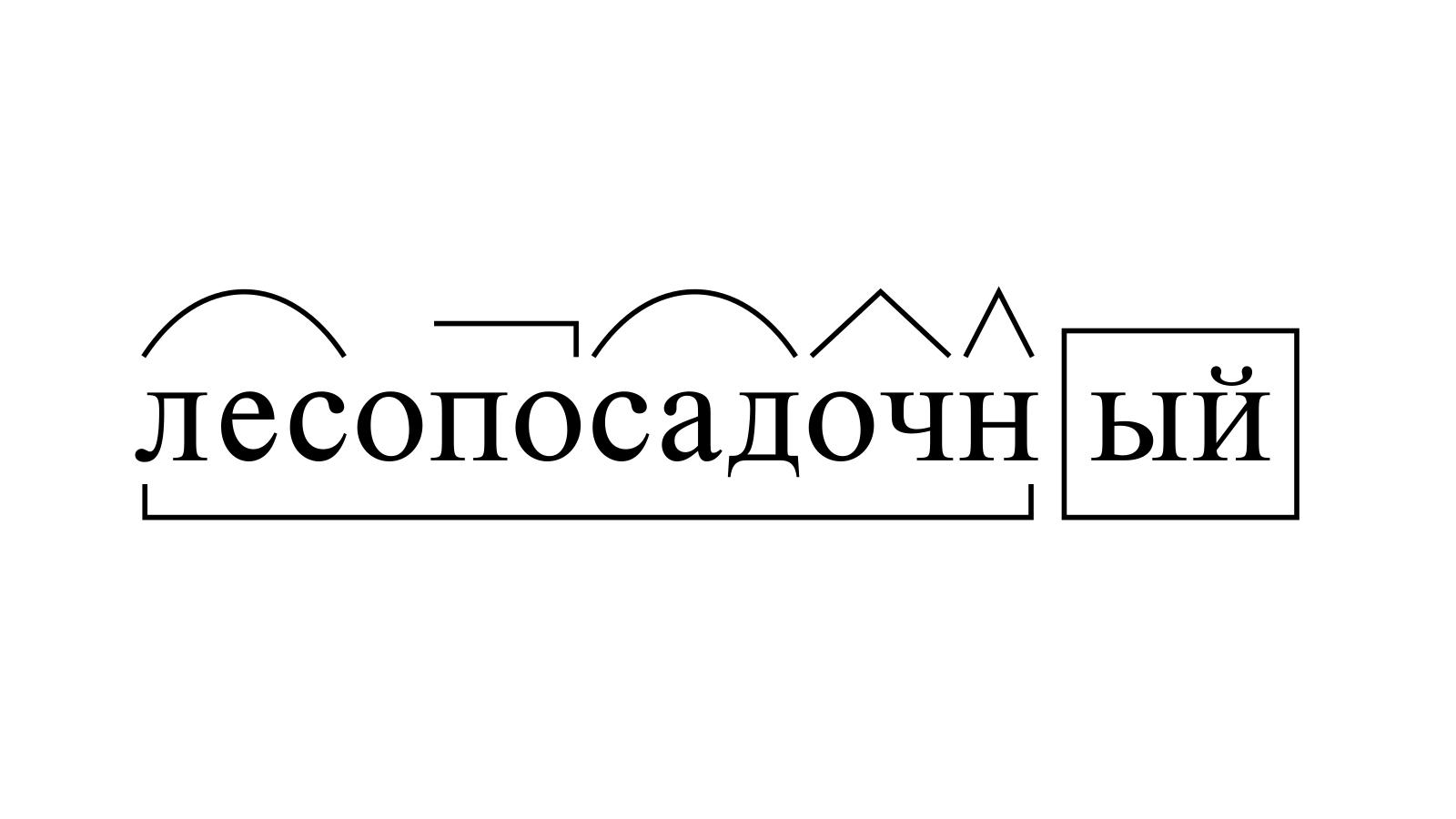 Разбор слова «лесопосадочный» по составу