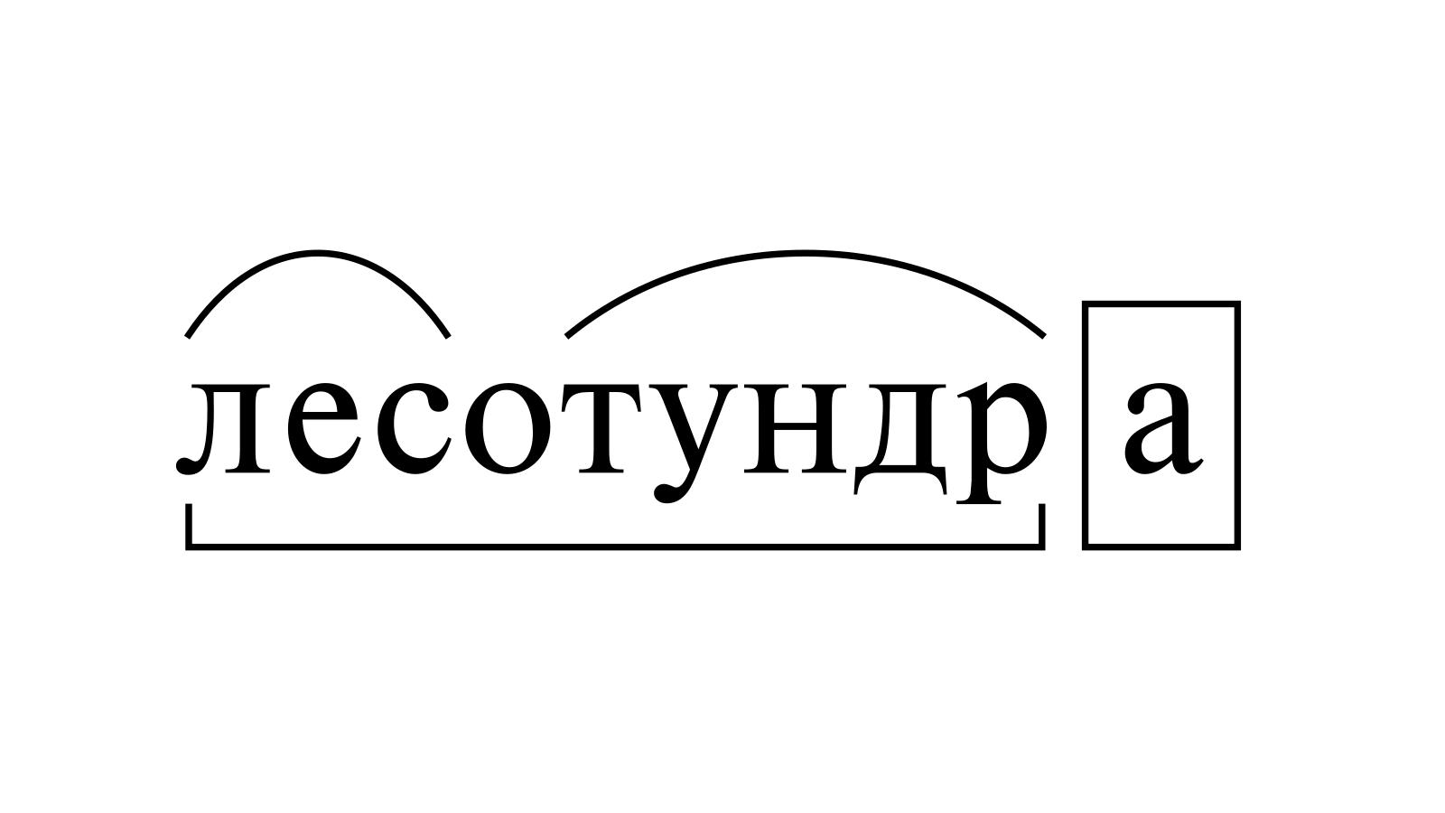 Разбор слова «лесотундра» по составу