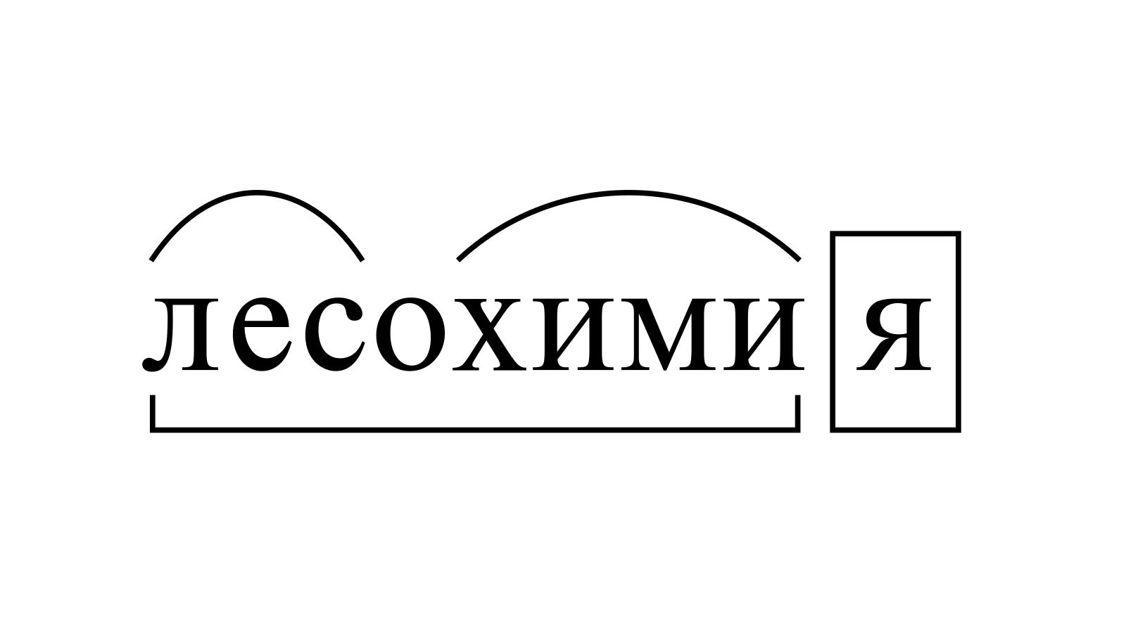 Разбор слова «лесохимия» по составу