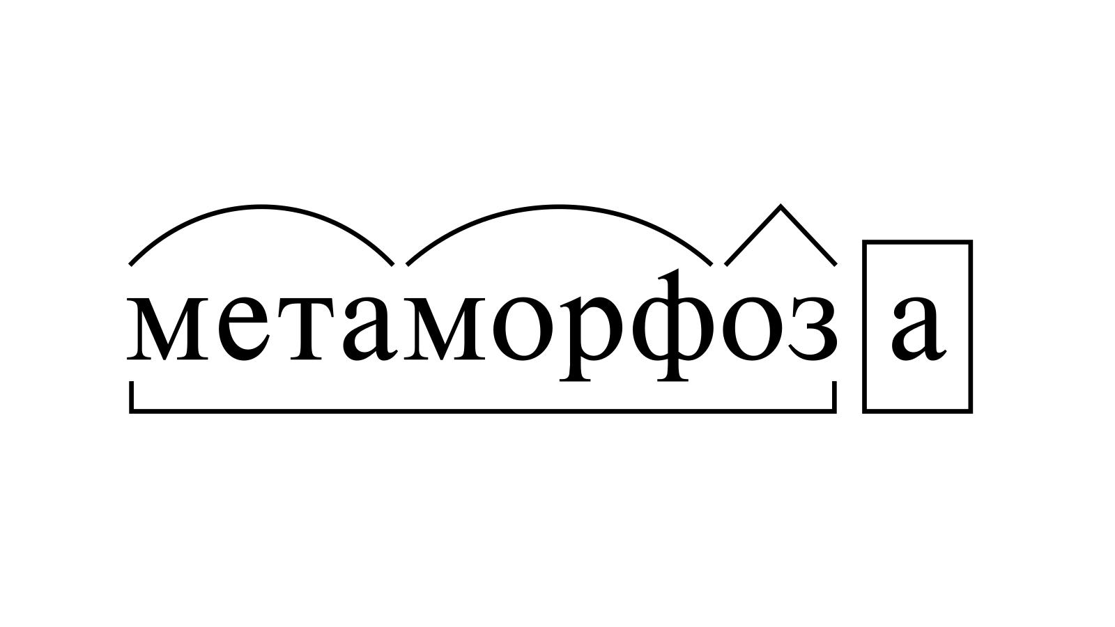 Разбор слова «метаморфоза» по составу