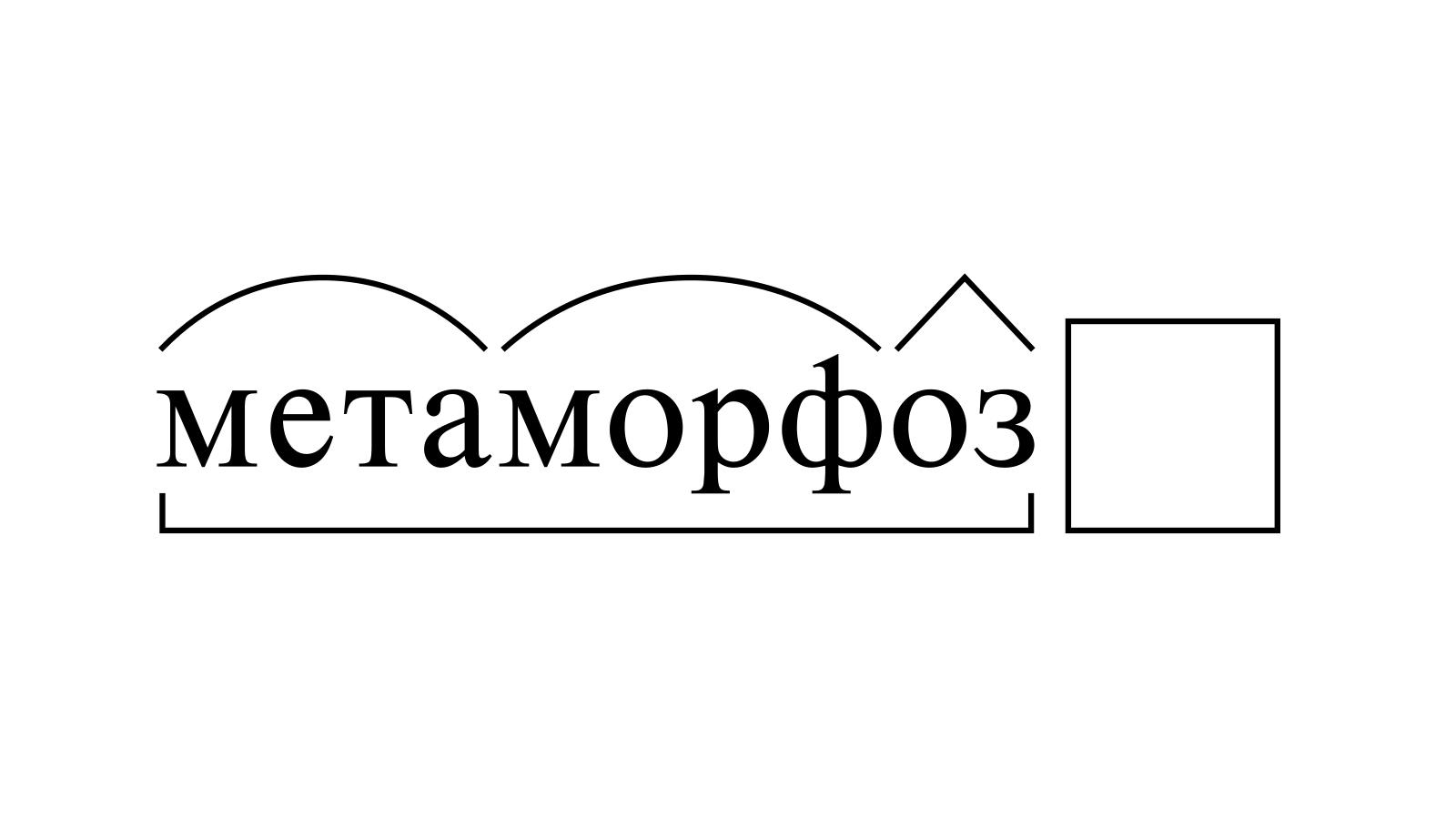 Разбор слова «метаморфоз» по составу