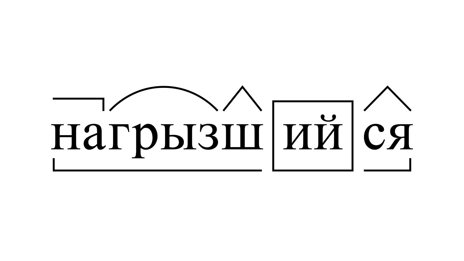 Разбор слова «нагрызшийся» по составу
