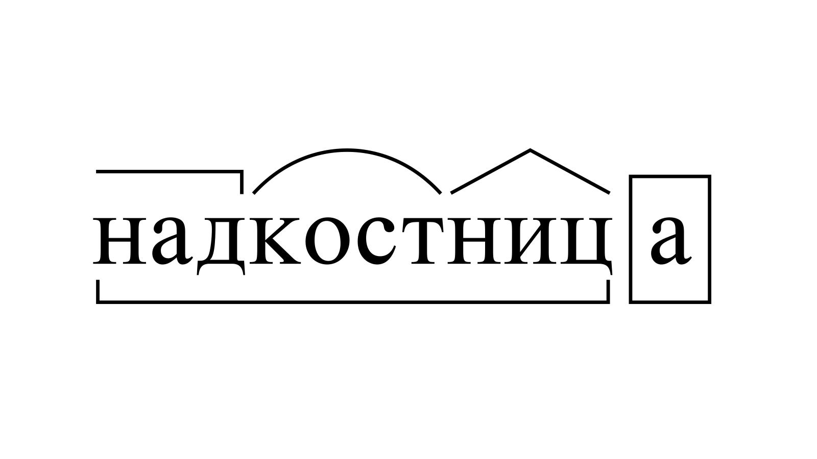 Разбор слова «надкостница» по составу