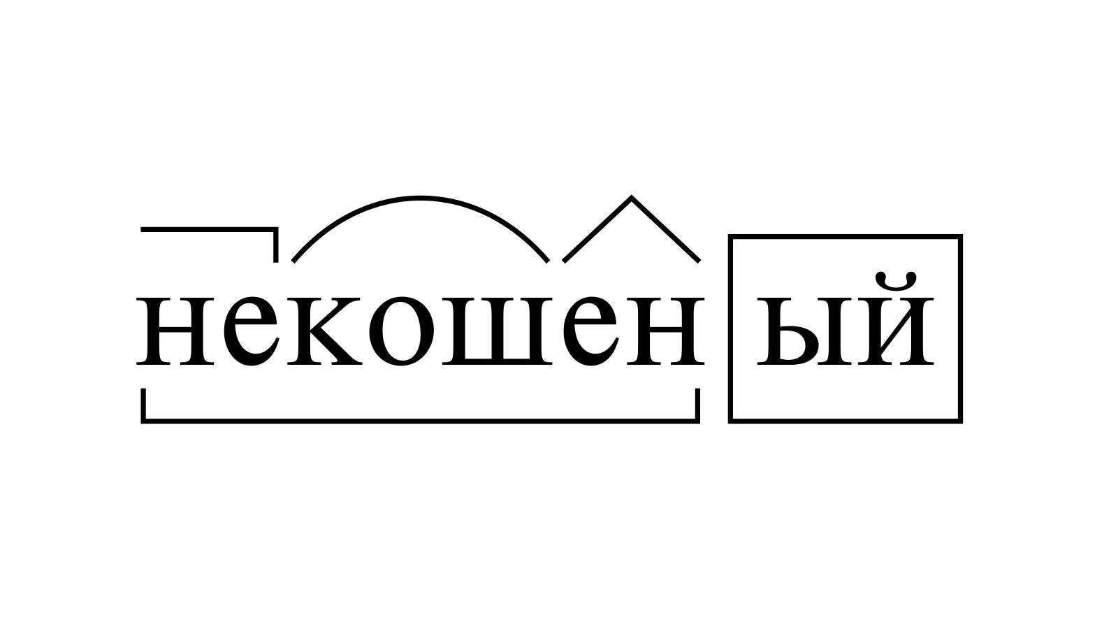 Разбор слова «некошеный» по составу