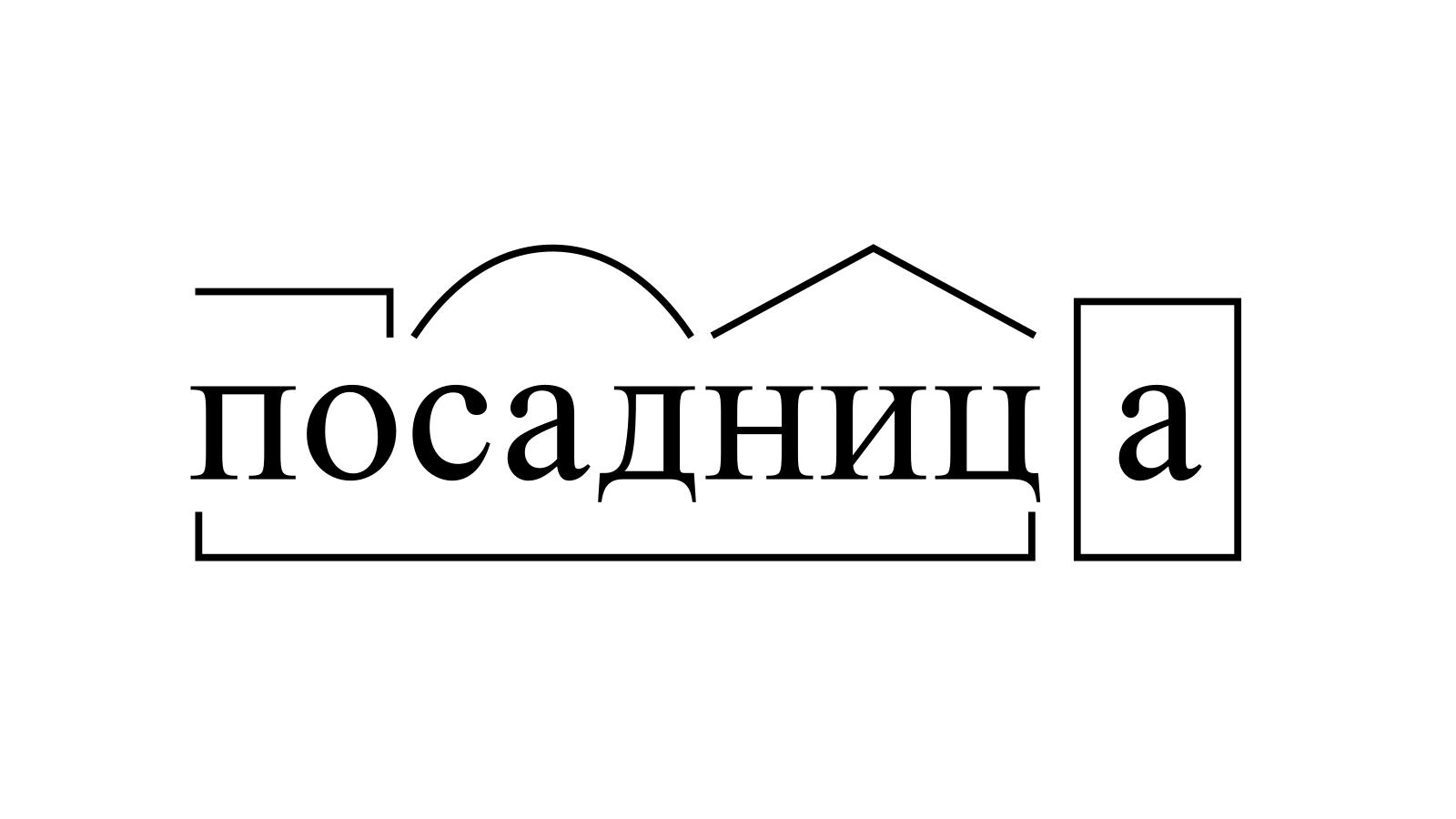 Разбор слова «посадница» по составу
