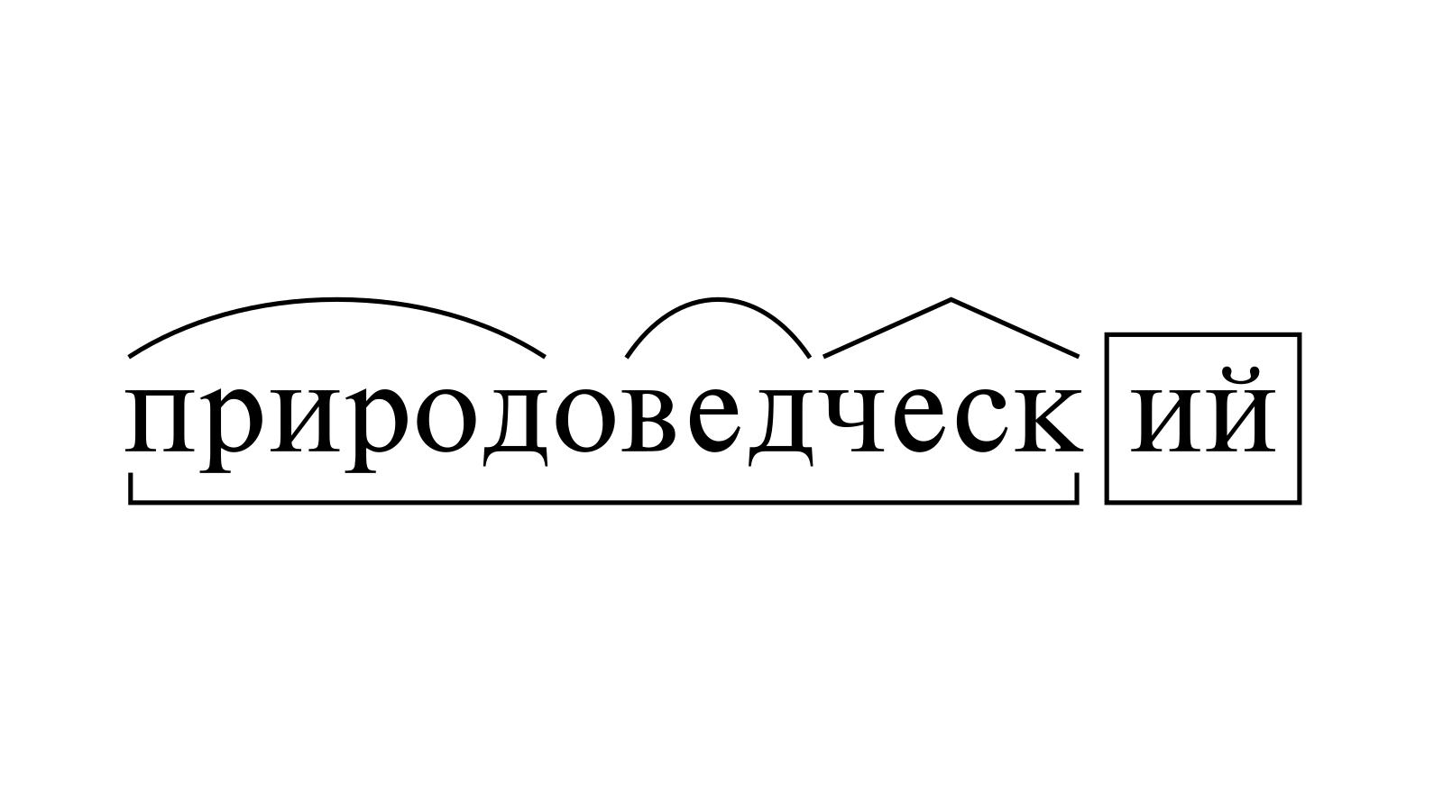 Разбор слова «природоведческий» по составу
