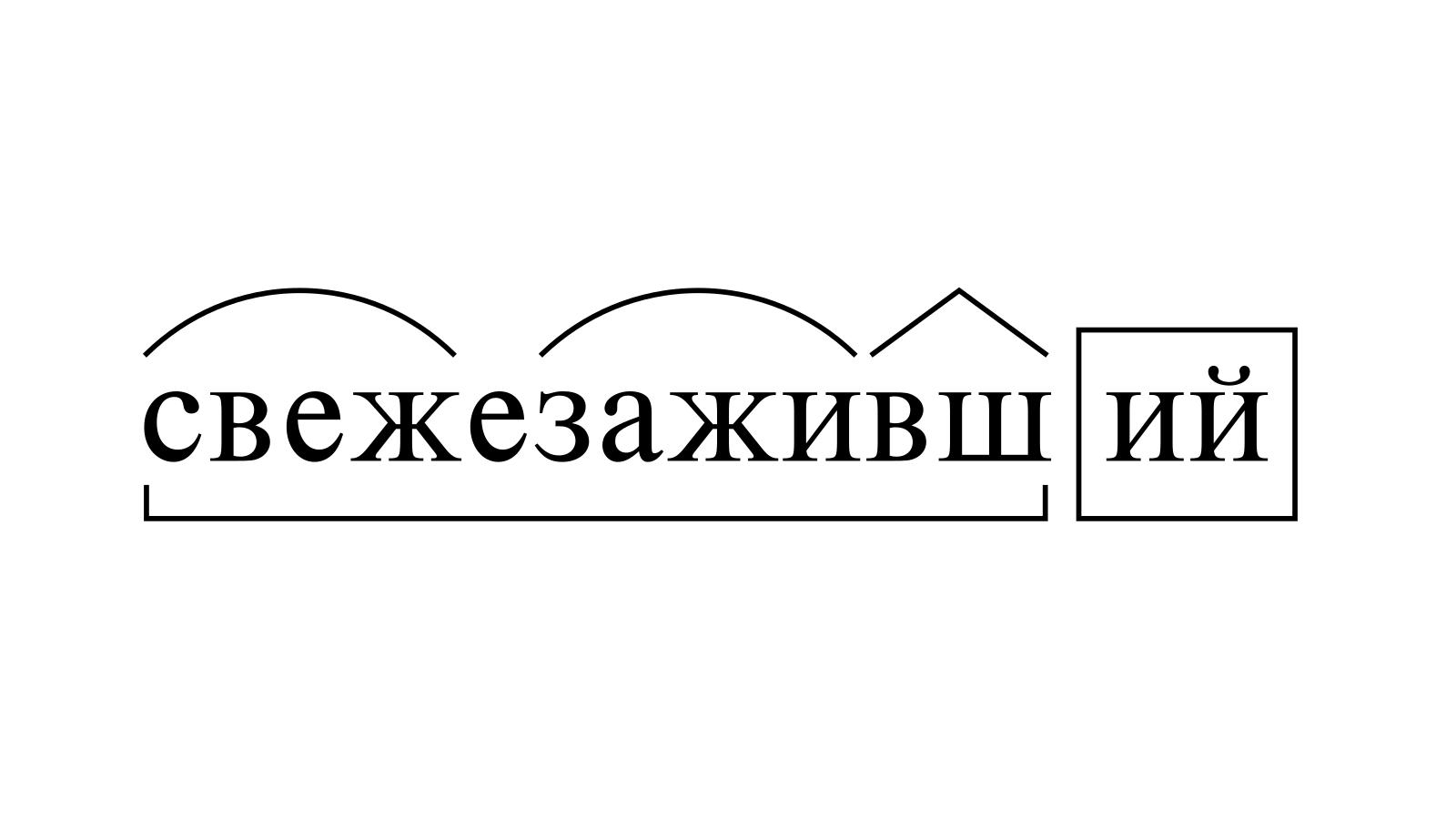 Разбор слова «свежезаживший» по составу