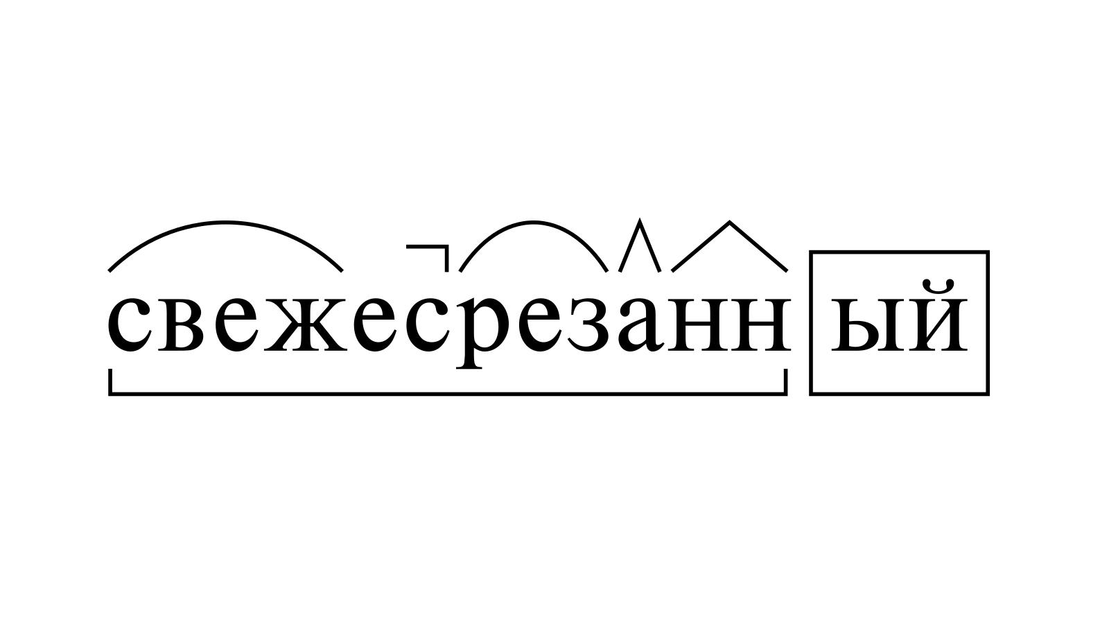 Разбор слова «свежесрезанный» по составу
