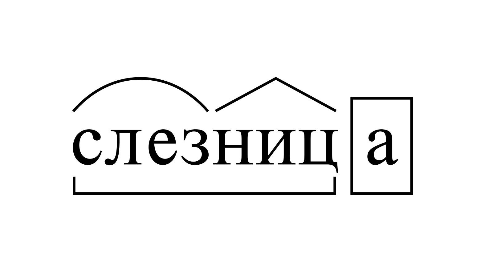 Разбор слова «слезница» по составу