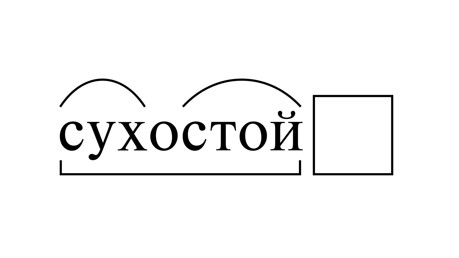 Разбор слова «сухостой» по составу