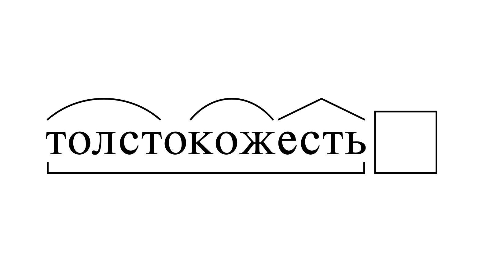 Разбор слова «толстокожесть» по составу