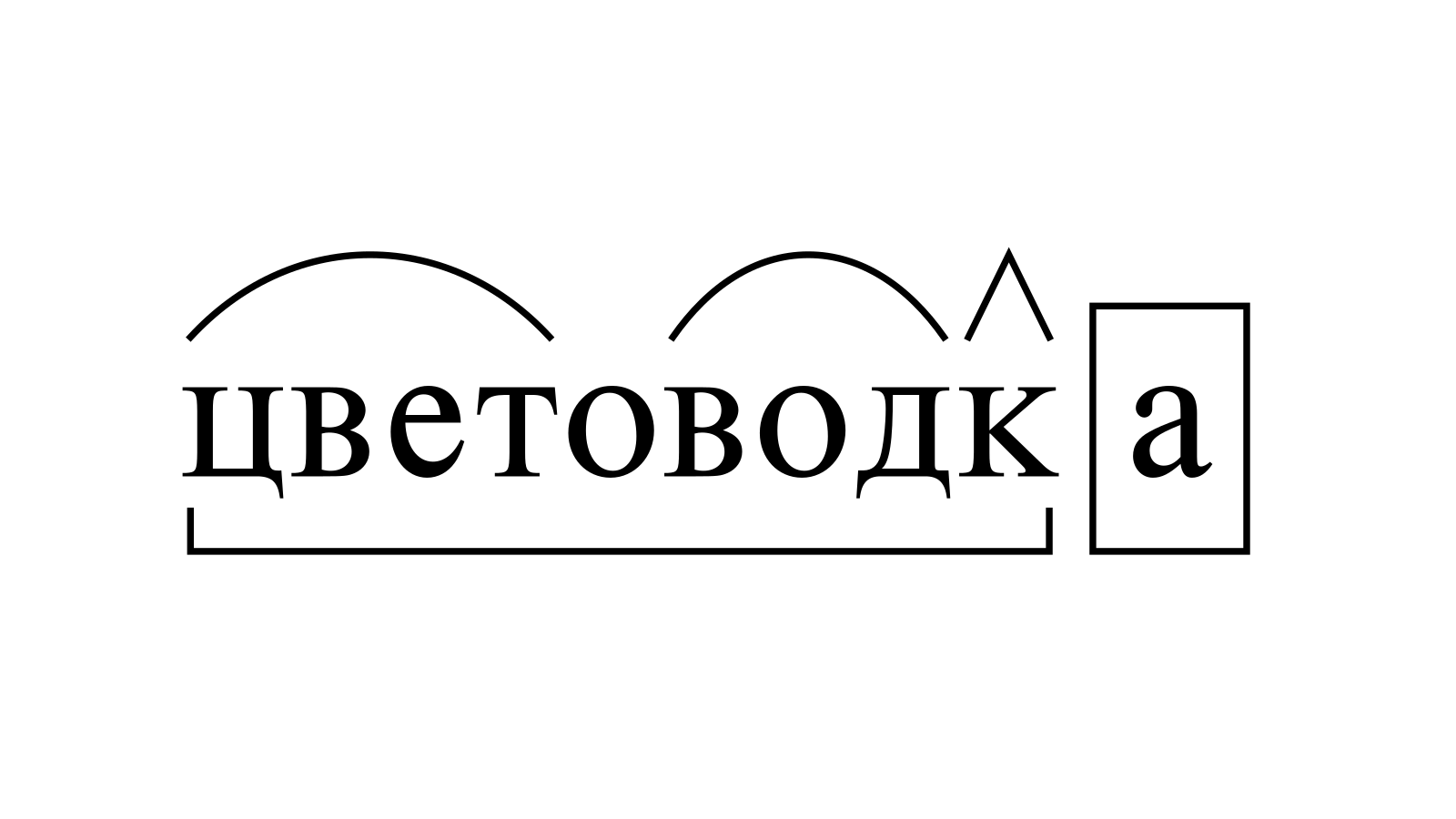 Разбор слова «цветоводка» по составу
