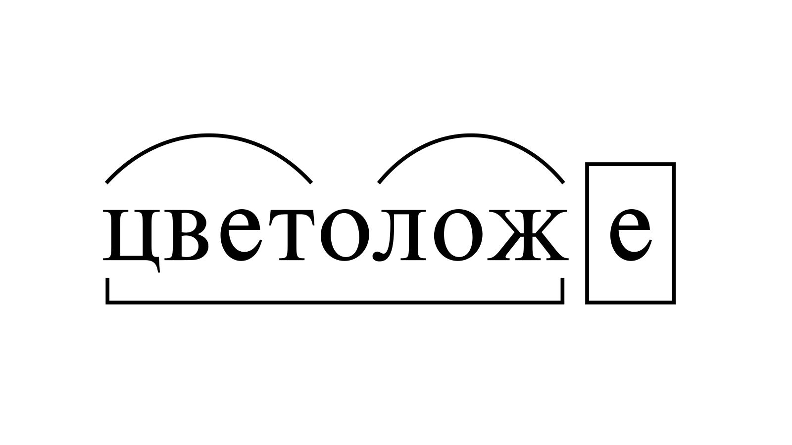 Разбор слова «цветоложе» по составу