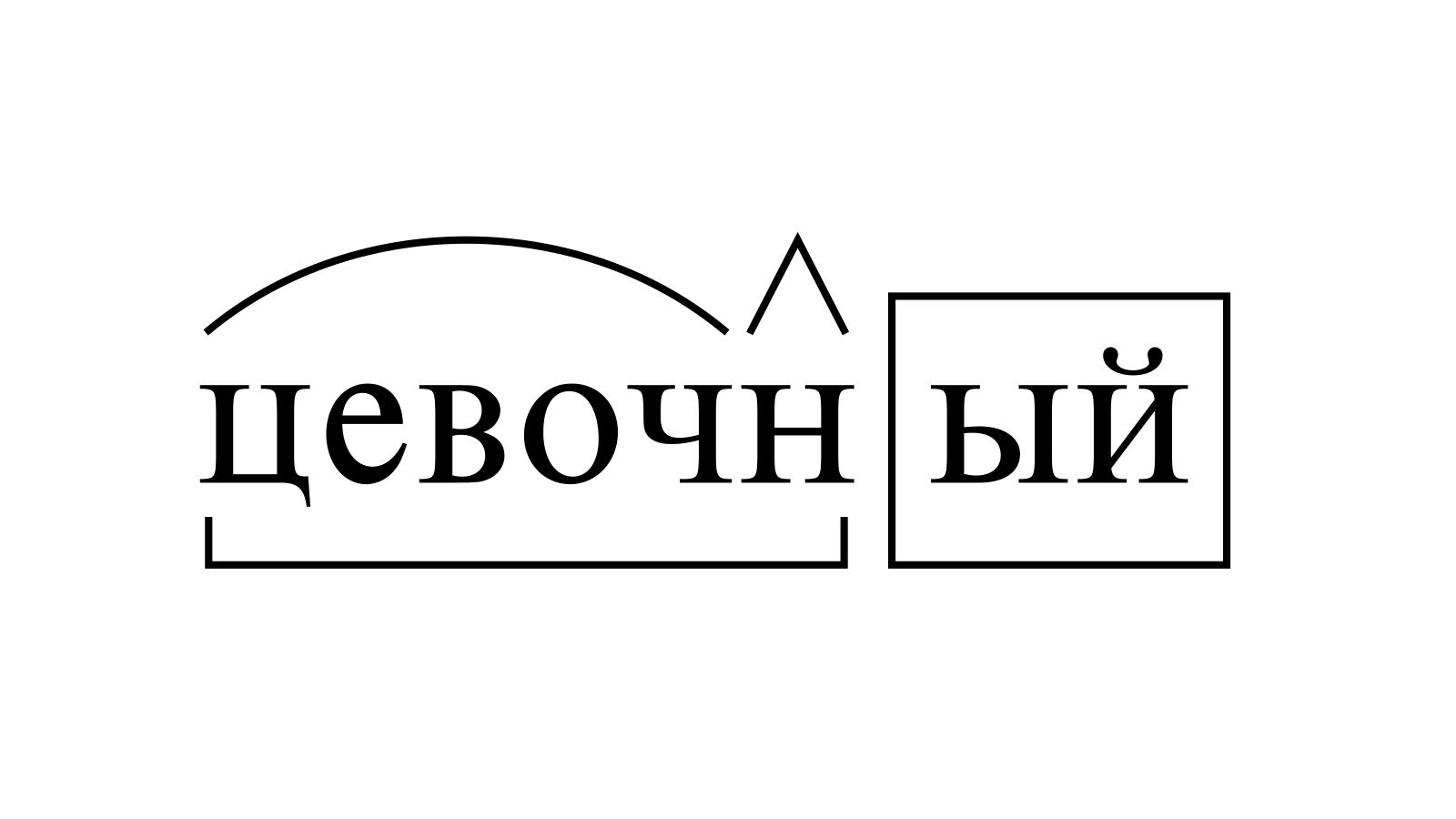 Разбор слова «цевочный» по составу