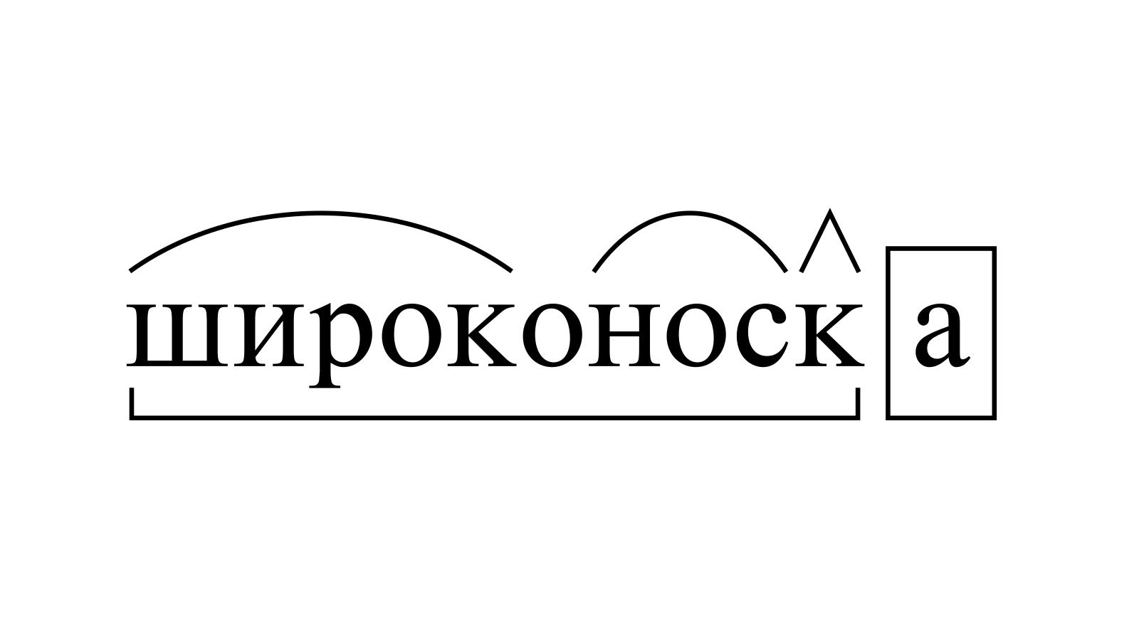 Разбор слова «широконоска» по составу